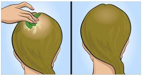 La vitamina previene una perdita di capelli